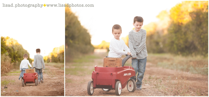 Orange Grove Family Session