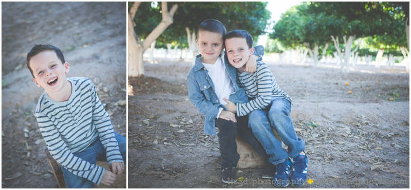 Mesa family photography session in the Orange Groves | Orange Grove Family Session | Lisa d. Photography |